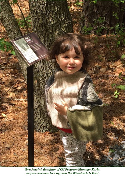 Vera Rossini, daughter of CU Program Manager Karla, inspects the new tree signs on the WheatonArts Trail