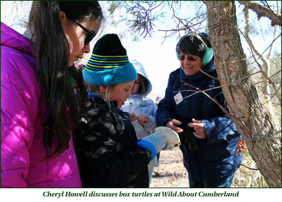 Cheryl Howell discusses box turtles at Wild About Cumberland