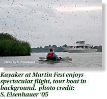 Kayaker at Martin Fest