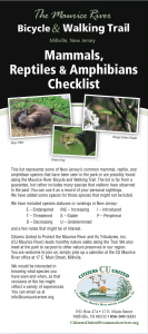 Mammal, Reptiles & Amphibians Checklist