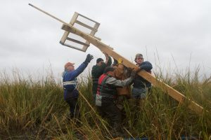 Erecting an Osprey Nest