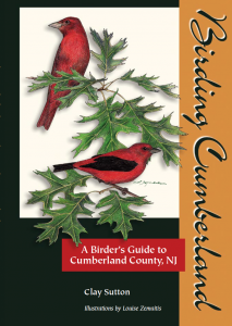 Birder's Guide to Cumberland County