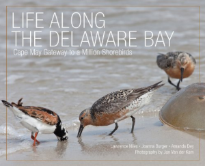 Life Along the Delaware Bay book