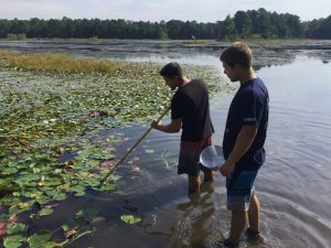 Dragon Fly sampling at Cumberland Pond