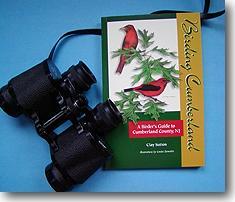 Birding Guide
