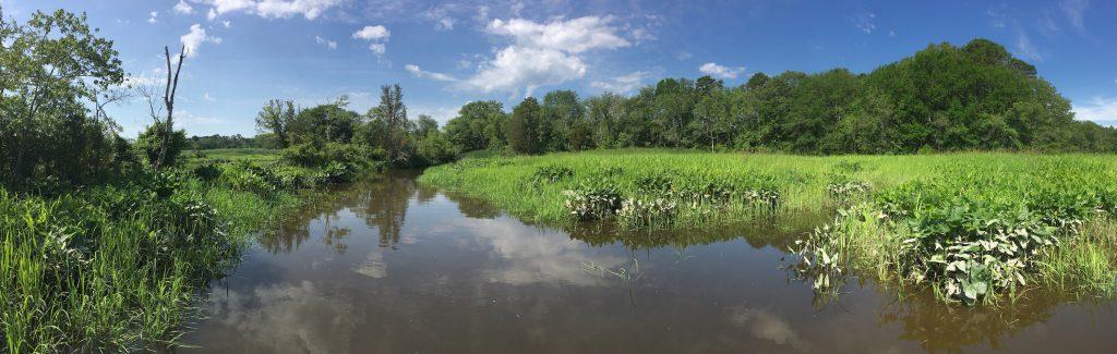 Menantico River
