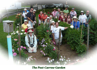 The Post-Carrow Garden