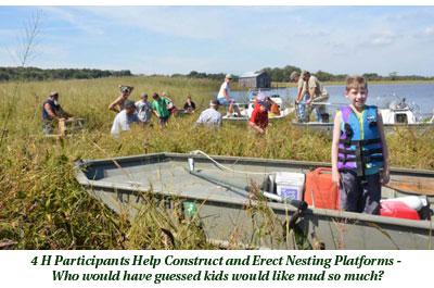 4H participants help construct and raise nesting platforms