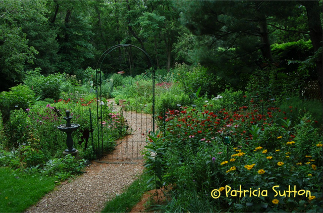 Garden Tour with Pat Sutton