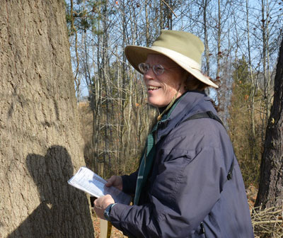 Pat Sutton leading last fall's Giant Tree Tour