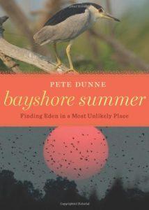 Bayshore Summer