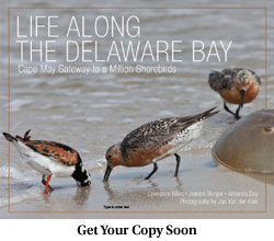 Life Along the Delaware Bay book cover