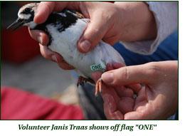 """Volunteer Janis Traas shows off flag """"ONE"""""""