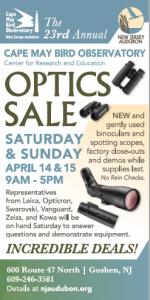 optics sale