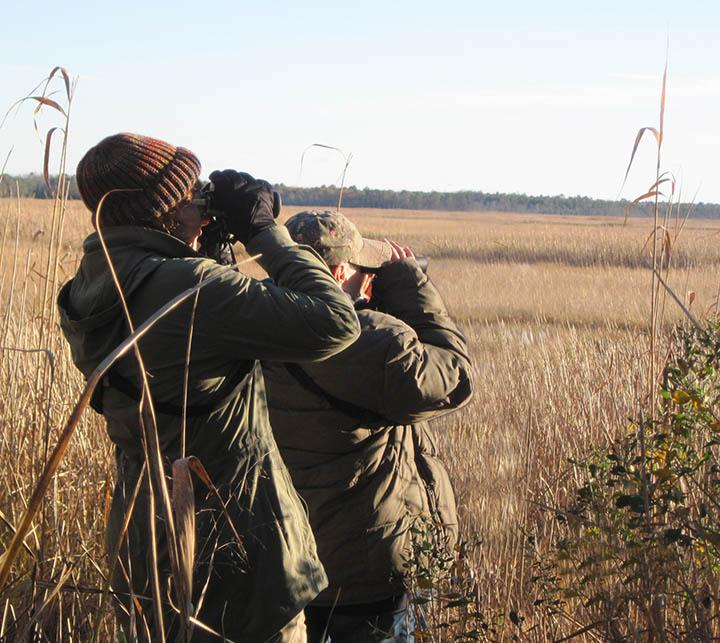 Christine and Wendy scanning the horizon for wildlife