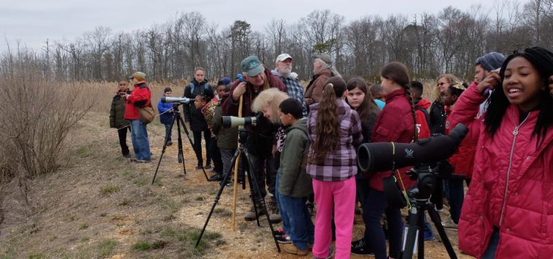 Wild About Cumberland students searching for ducks