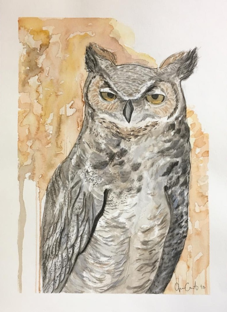 Great Horned Owl by Jessie Leigh Castor