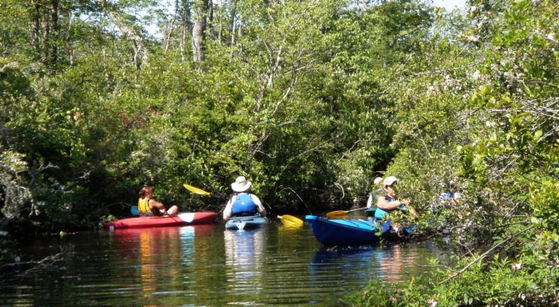 Muskee Creek