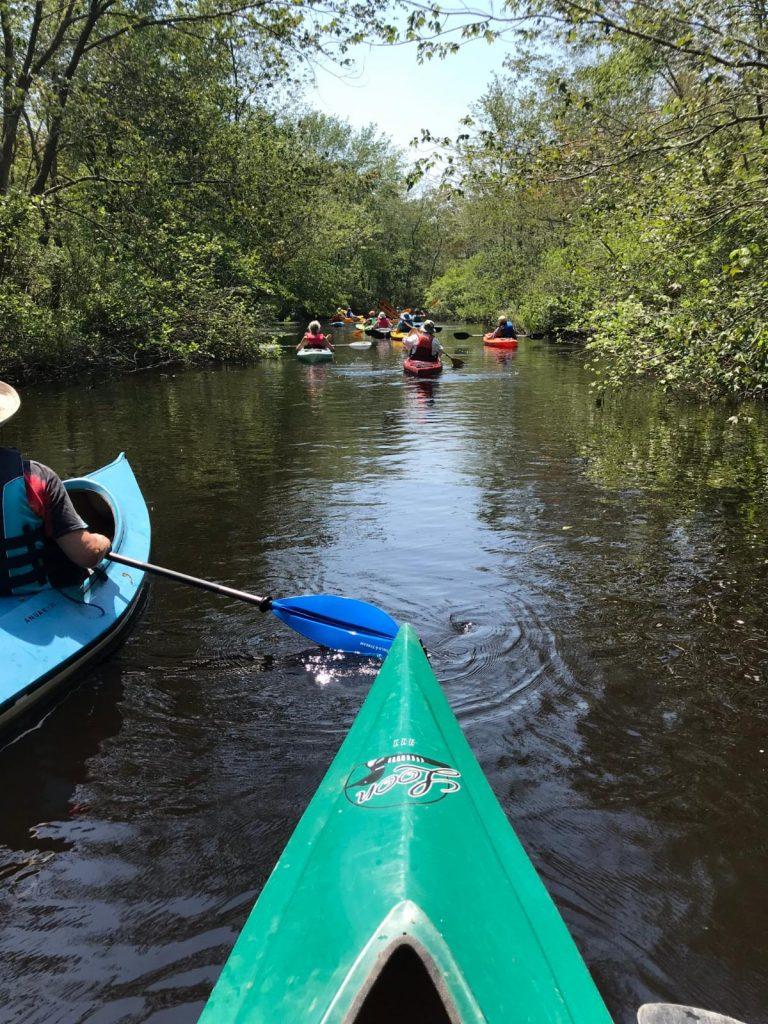 Willow Grove Paddle Still Run